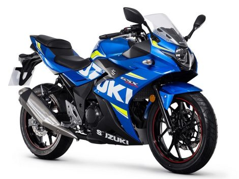 Suzuki GSX 250 R 13:30